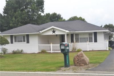 Single Family Home For Sale: 115 Prittstown Rd