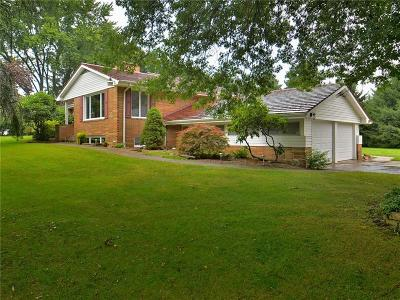 Murrysville Single Family Home For Sale: 4942 Simmons Circle