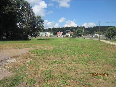 Somerset/Cambria County Residential Lots & Land For Sale: 313 Keystone