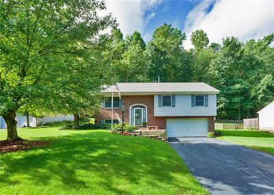 Delmont Single Family Home Contingent: 140 Rose Ct S