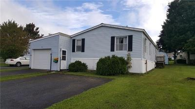 Somerset/Cambria County Mobile/Manufactured For Sale: 116 Point Park Ln