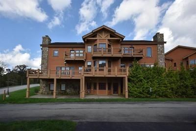 Somerset/Cambria County Townhouse For Sale: 553 Woodside Cres