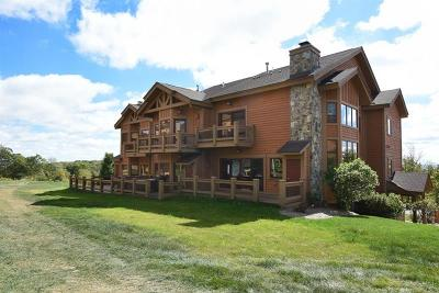 Somerset/Cambria County Townhouse For Sale: 131 Chipmunk
