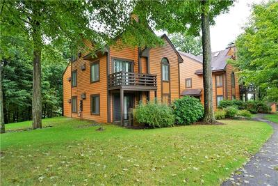 Somerset/Cambria County Condo For Sale: 2401 Swiss Mountain Drive