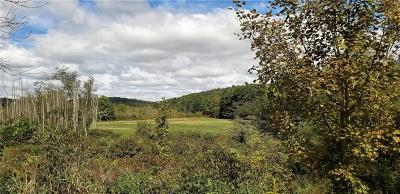 Somerset/Cambria County Residential Lots & Land For Sale: Ream Road