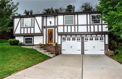 Single Family Home Contingent: 113 Cannon Drive