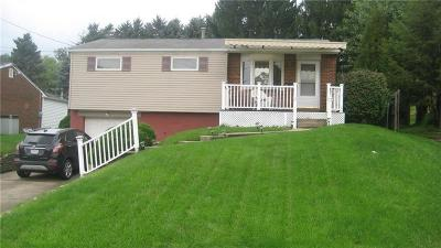 Westmoreland County Single Family Home For Sale: 13190 St Clair Dr