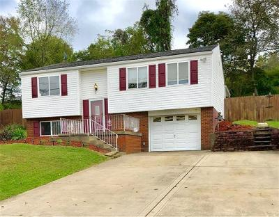 Single Family Home For Sale: 220 Mt Manor Rd.