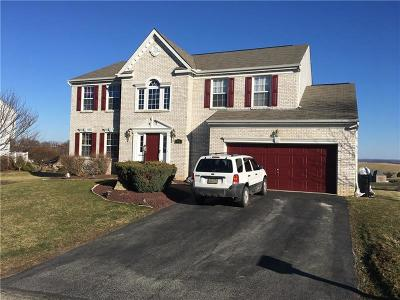 Westmoreland County Single Family Home For Sale: 491 W Spring Grove Blvd