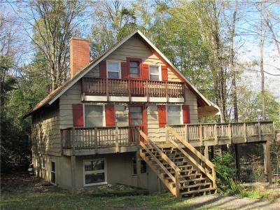 Indian Lake Boro Single Family Home For Sale: 409 Delaware Path