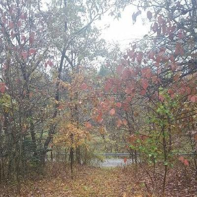 Westmoreland County Residential Lots & Land For Sale: Lot Utopia Rd