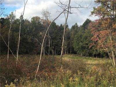 Westmoreland County Residential Lots & Land For Sale: Parcel Rt 271
