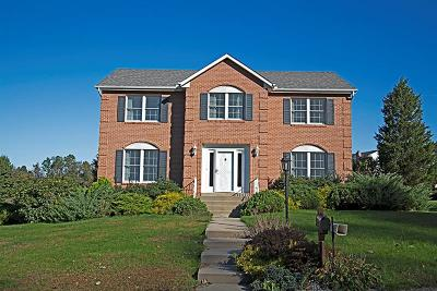 Delmont Single Family Home For Sale: 300 Dogwood Dr