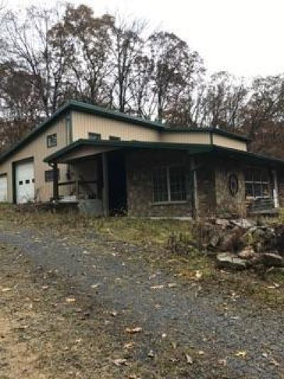 Somerset/Cambria County Single Family Home For Sale: 1909 Glades Pike