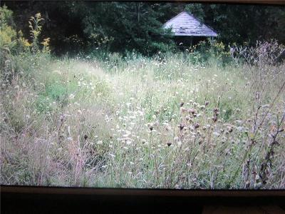 Somerset/Cambria County Residential Lots & Land For Sale: 3034 Listonburg