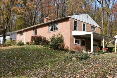 Washington Twp Single Family Home For Sale: 1387 Brush Ln