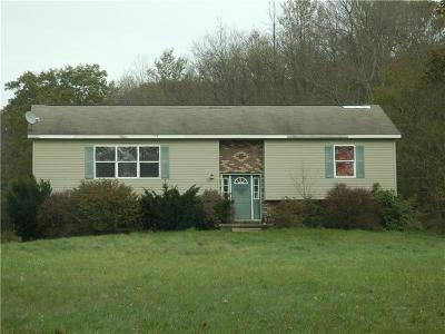 Somerset/Cambria County Single Family Home For Sale: 722 Deeter Gap