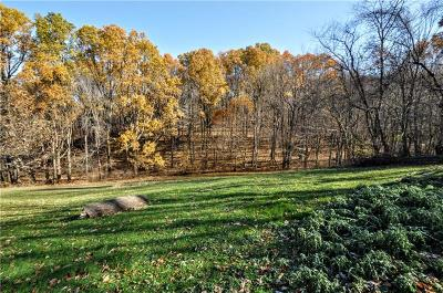 Residential Lots & Land For Sale: 730 Blacksmith