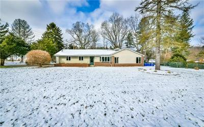 Murrysville Single Family Home For Sale: 4014 Sardis Rd