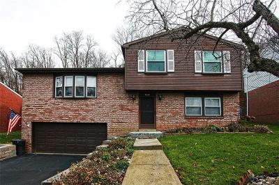 Penn Hills Single Family Home For Sale: 413 Cypress Hill Dr