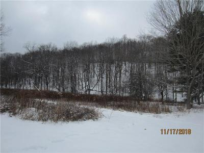 Somerset/Cambria County Residential Lots & Land Contingent: Greenville Rd