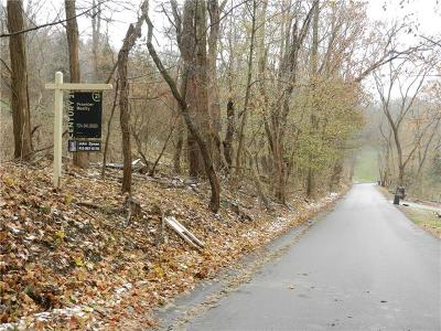 Residential Lots & Land For Sale: Lot 2 Snyder Rd.
