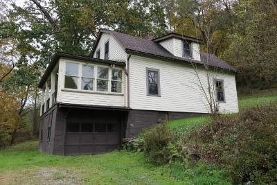 Somerset/Cambria County Single Family Home For Sale: 1536 Soap Hollow Road