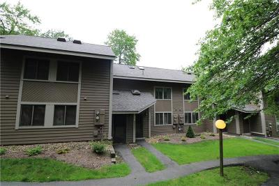 Hidden Valley Condo For Sale: 1226 Gristmill Lane