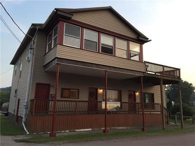 Somerset/Cambria County Rental For Rent: 115 Ross Street #1