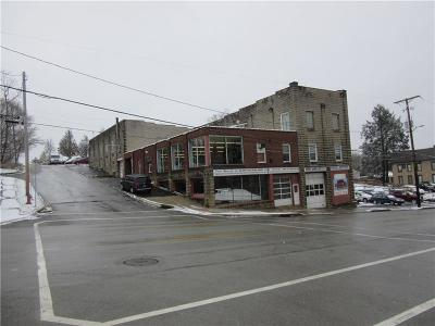 Somerset/Cambria County Commercial For Sale: 301 N Center Ave