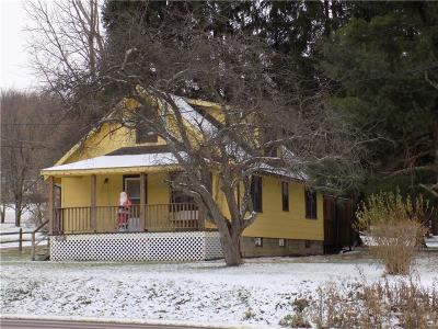 Somerset/Cambria County Single Family Home For Sale: 7326 National Pike