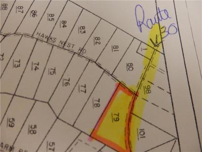 Somerset/Cambria County Residential Lots & Land For Sale: Lot 79 Hawks Nest Road