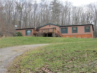 Somerset/Cambria County Mobile/Manufactured For Sale: 858 Pioneer Rd
