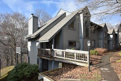 Somerset/Cambria County Condo Contingent: 3808 Swiss Mountain Dr