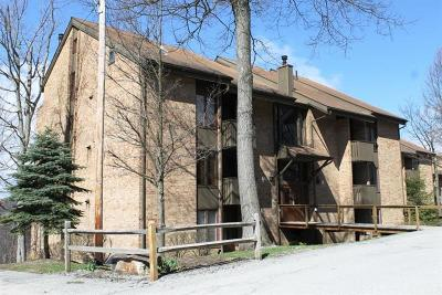 Somerset/Cambria County Rental For Rent: 3b4 Mt. Villas Drive