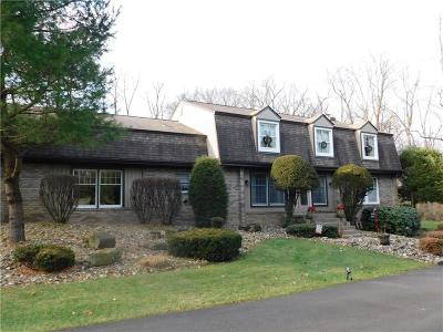 Murrysville Single Family Home For Sale: 3580 McWilliams Road