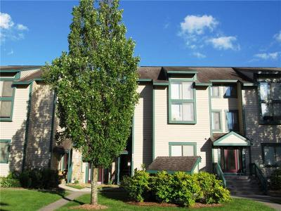 Somerset/Cambria County Condo For Sale: 8077 Meadowridge