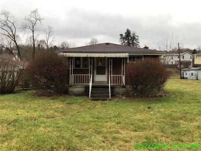 Single Family Home For Sale: 11720 State Route 993