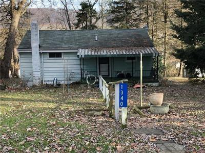 Single Family Home For Sale: 1340 Business Route 66