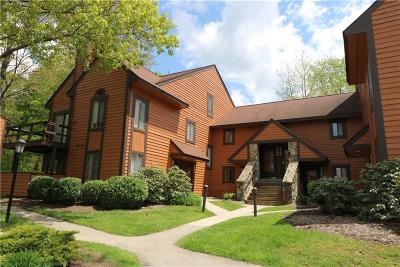 Somerset/Cambria County Condo For Sale: 2901 Swiss Mountain Drive
