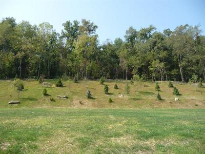 Upper St. Clair Residential Lots & Land For Sale: 1201(Lot 720) Turnberry Drive