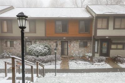 Somerset/Cambria County Townhouse For Sale: 59 Swiss Mountain