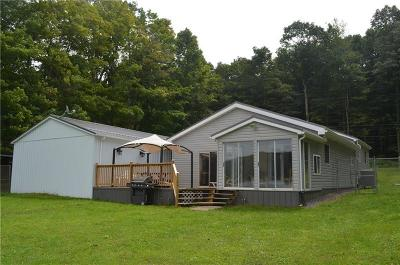 Somerset/Cambria County Single Family Home For Sale: 418 Lake Shore Road