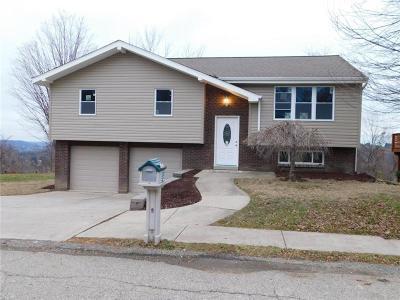 Penn Hills Single Family Home For Sale: 4094 Greenridge Dr