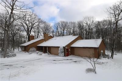 Single Family Home For Sale: 137 Ridgeview Road