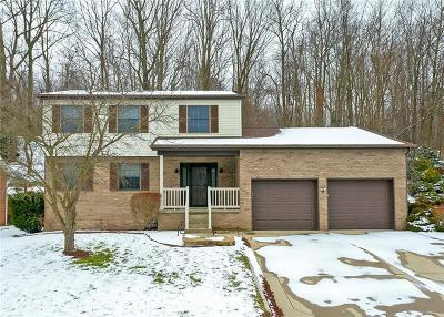 Delmont Single Family Home For Sale: 125 Apple Hill Dr