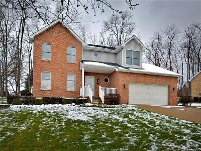 Westmoreland County Single Family Home For Sale: 2225 Hyland Rd