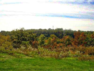 Upper St. Clair Residential Lots & Land For Sale: Lot 213 Waterford Court