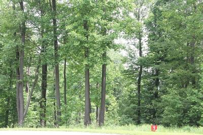 Somerset/Cambria County Residential Lots & Land For Sale: Lot # 7 Ptarmigan Way