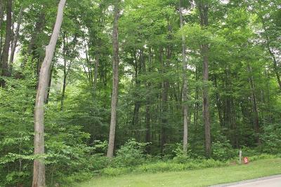 Somerset/Cambria County Residential Lots & Land For Sale: Lot# 30 Grouse Pt.